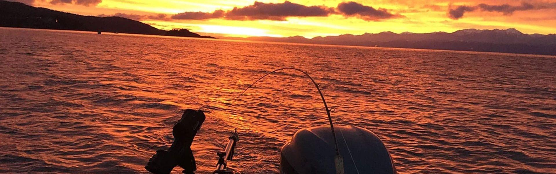 fishingcharters