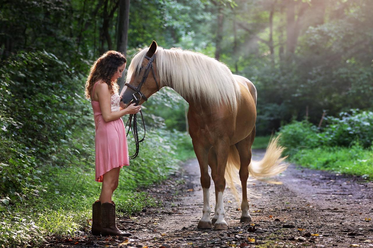 shrm-horse-2