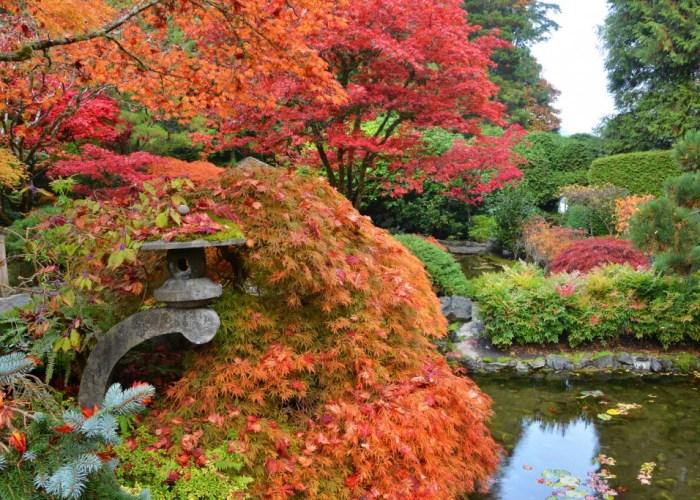 autumn-65-1024×683-1
